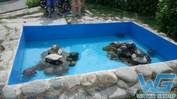 Бассейн для черепах в зоопарке